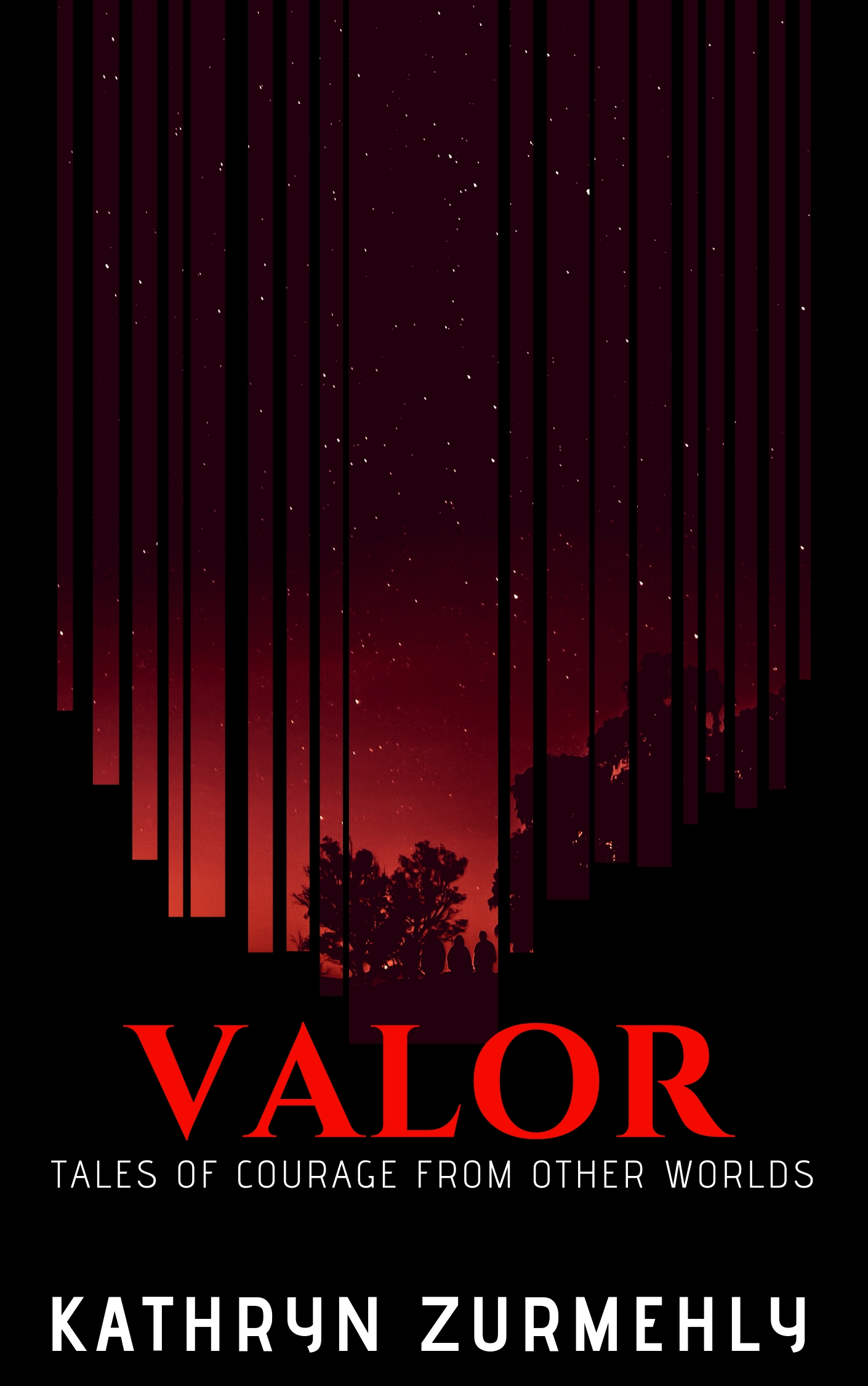 Valor Book Cover